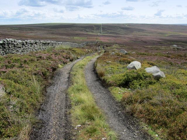 Track descending towards White Wham Head