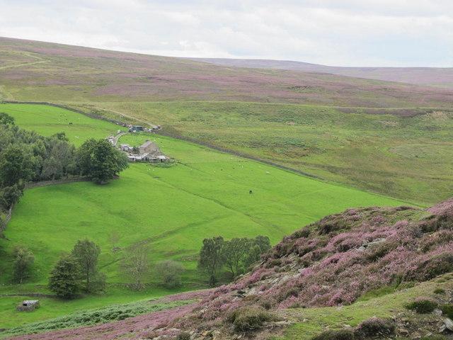 The valley of Stanhope Burn around Hope House (2)