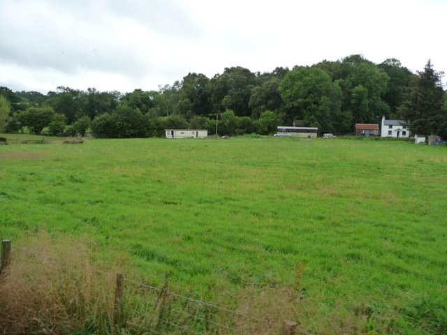 Summer field in front of Tan yr Hafod
