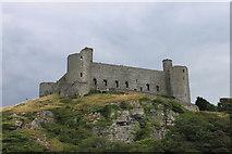 SH5831 : Harlech Castle by Roger Davies