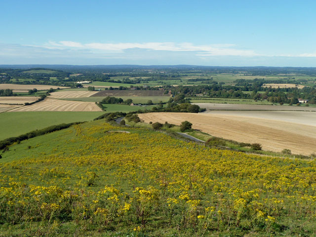 View from Firle chalk pit
