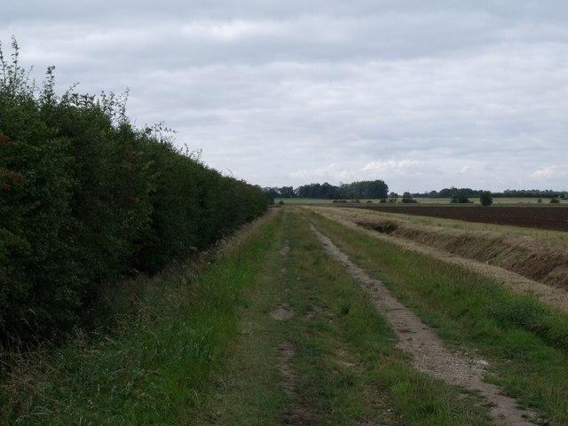 Track and Drain near Dovetail Farm