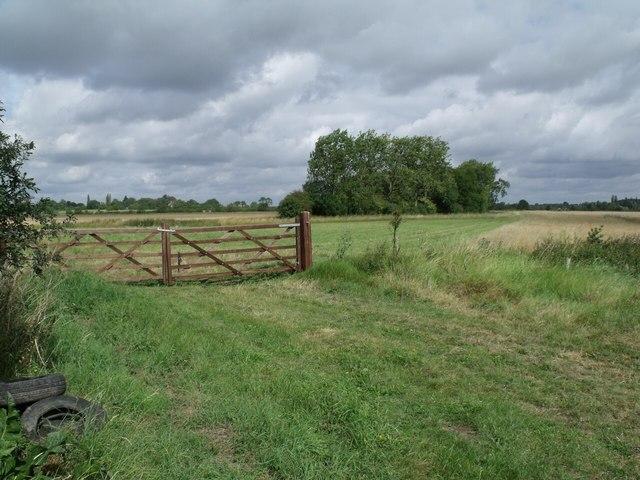 Car Dyke Plantation