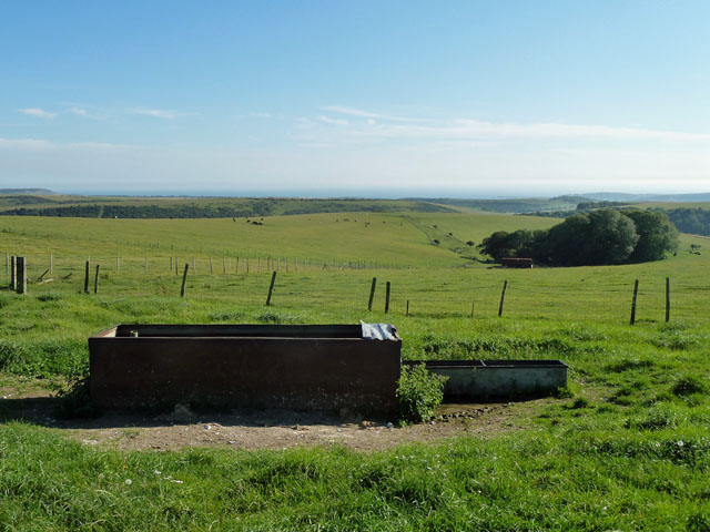 Water troughs with a sea view