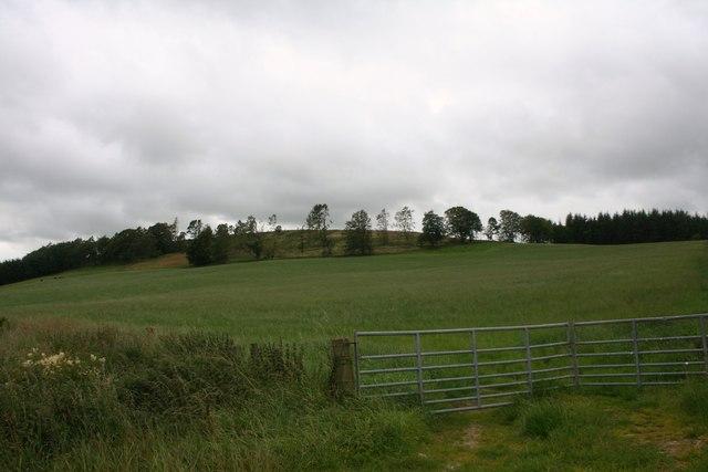 Hill of Raich