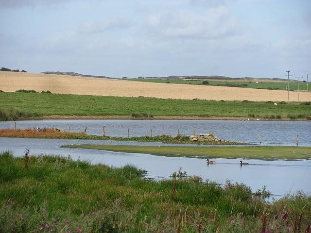 Wetland behind St Aidan's Dunes
