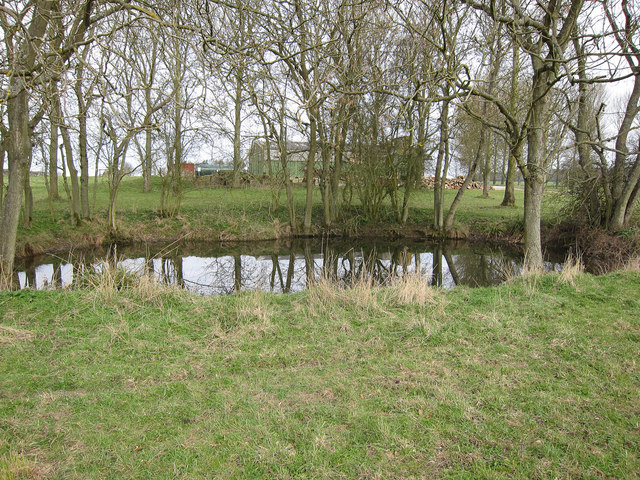 Small pond by Stetchworth Park Farm