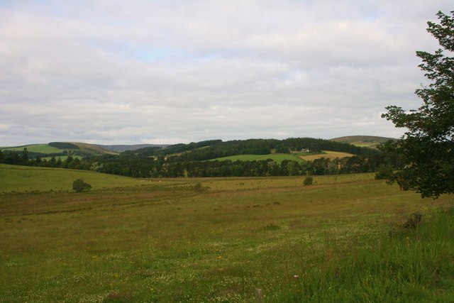 Pasture by Belnaboth