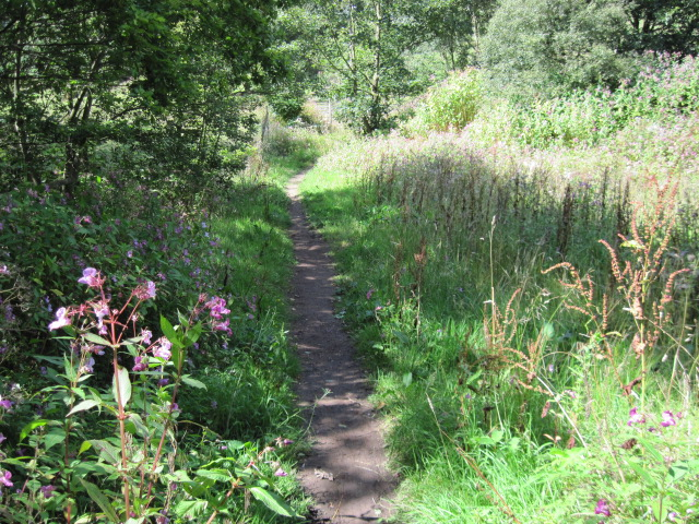 Footpath towards Stainland