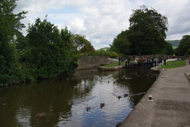 Ducks by Lock 32 of the Leeds and Liverpool Canal