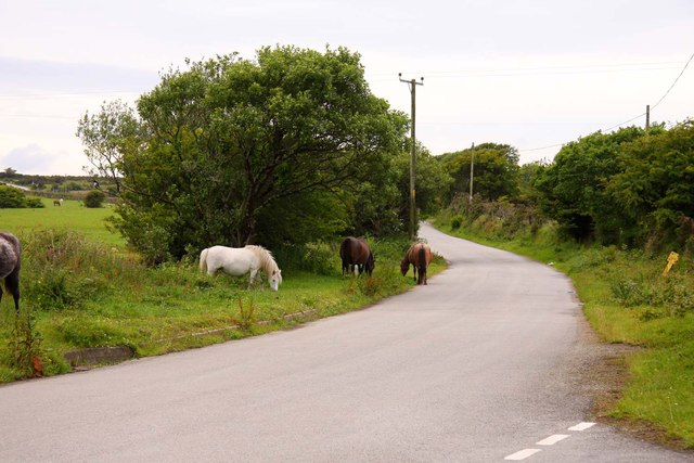 The road to Bodmin