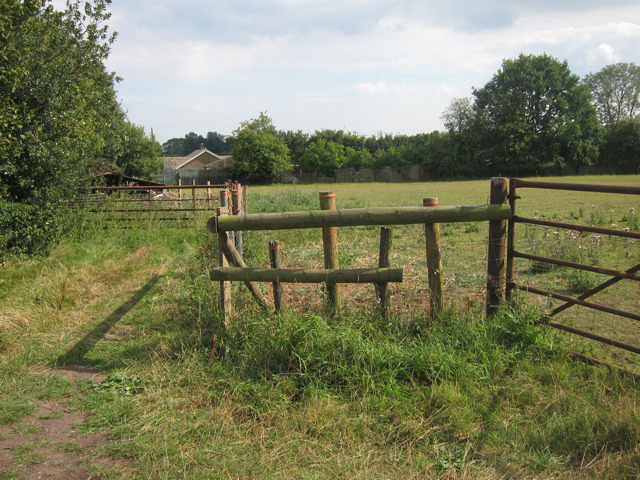 Field off Waterditch Lane