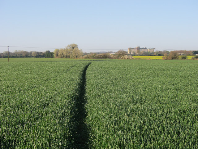 Footpath to Fulbourn