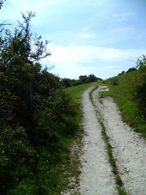 Bridleway west of Devil's Dyke
