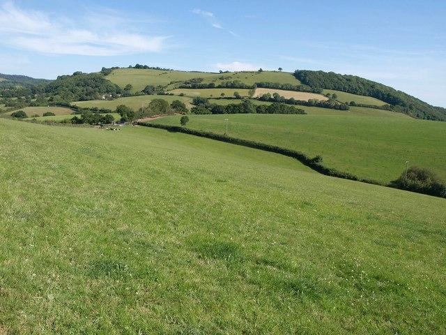 Countryside near Doddiscombsleigh