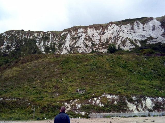 Folkestone Warren, Capel Court Cliff