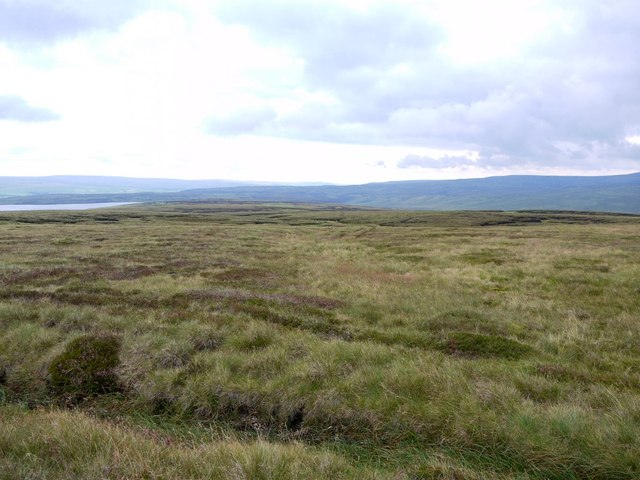 Rough grassland of Little and Great Cocklake east of Meldon Hill