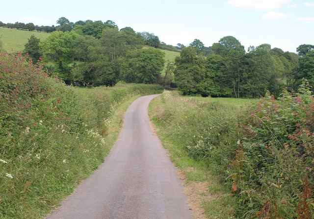 Lane near Petton