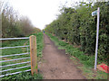 TL4363 : Bridleway to Girton by Hugh Venables