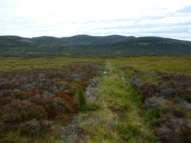 Miles and miles of heather moorland......
