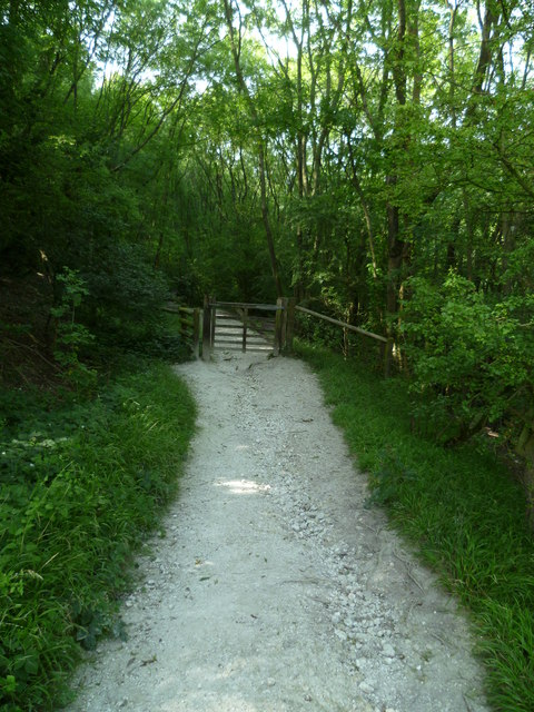 Bridleway to Poynings enters woodland