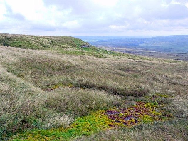 Marsh south-east of Meldon Hill