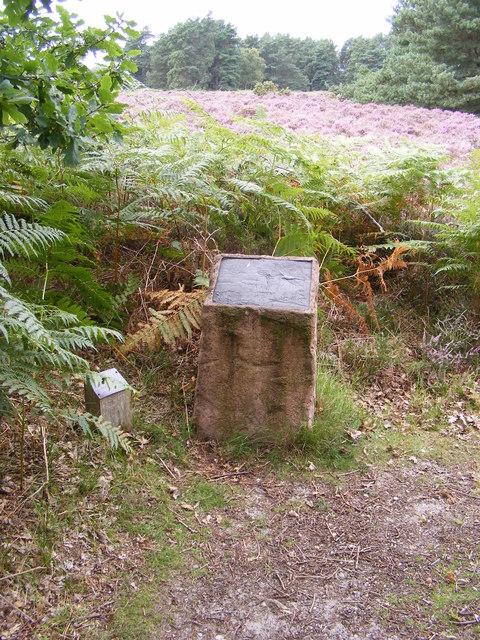 Sculpture on the footpath to Sandlings Walk over Blaxhall Heath