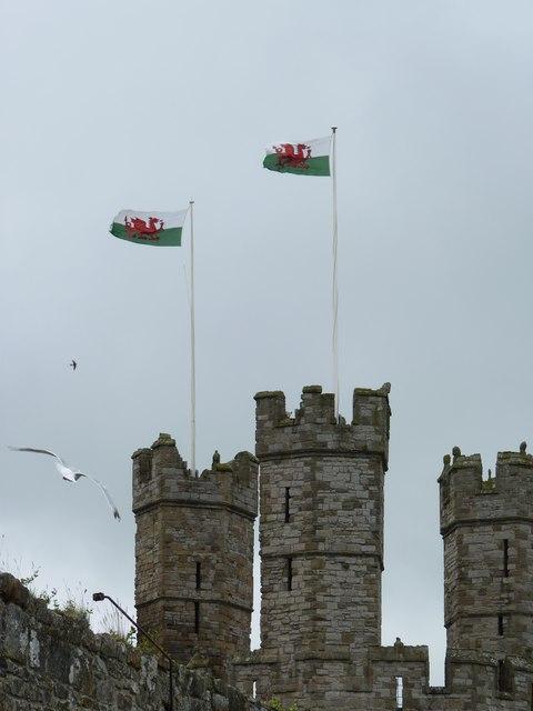 Welsh flags flying above the castle, Caernarfon