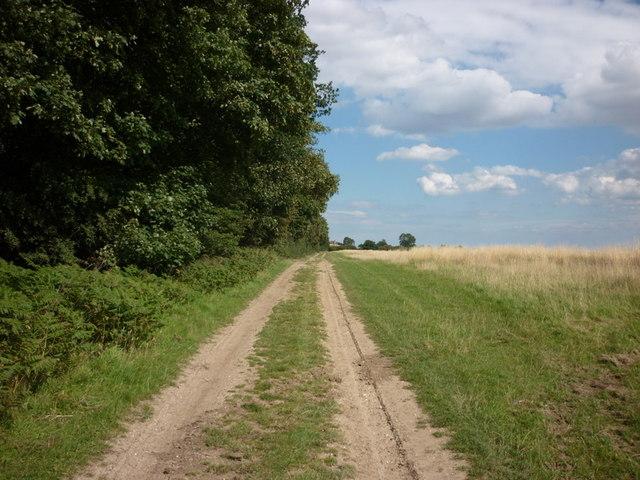 A private farm track heading towards Wood End Farm