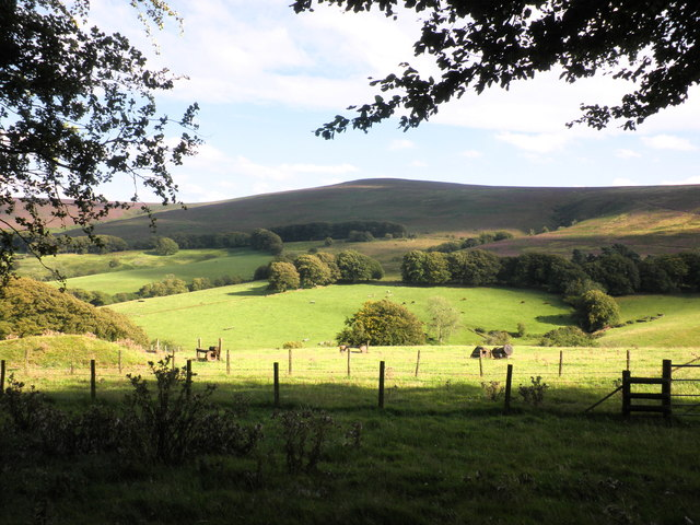 View across Sweetworthy Combe, to Dunkery Hill