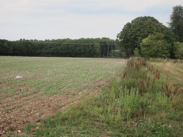 Fields south of Doddington