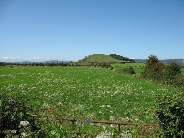 Draycott Moor