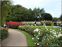 TQ2882 : Flower gardens in Regent's Park #2 by Robert Lamb