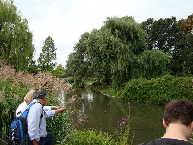 Lake near the flower garden #3