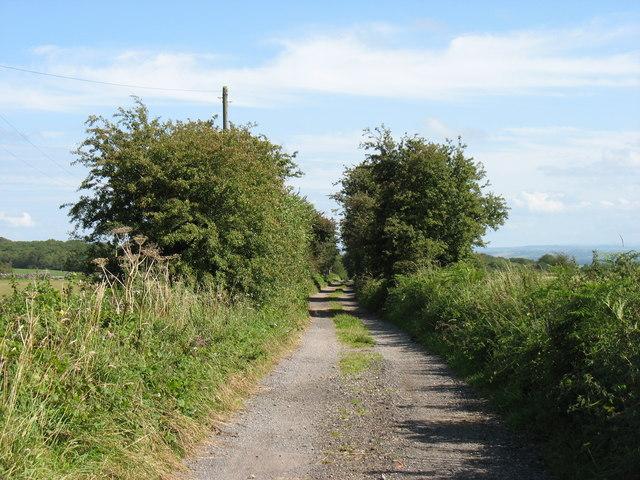 The By-way to Ebbor Grove Farm