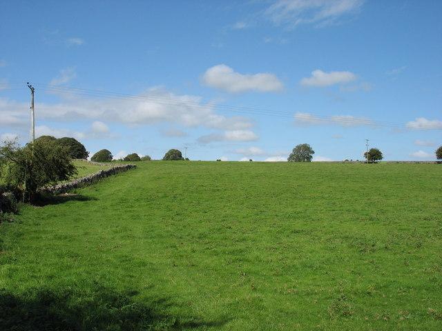 Fields opposite Lower Pitts Farm