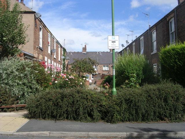 Board Street - Vine Street