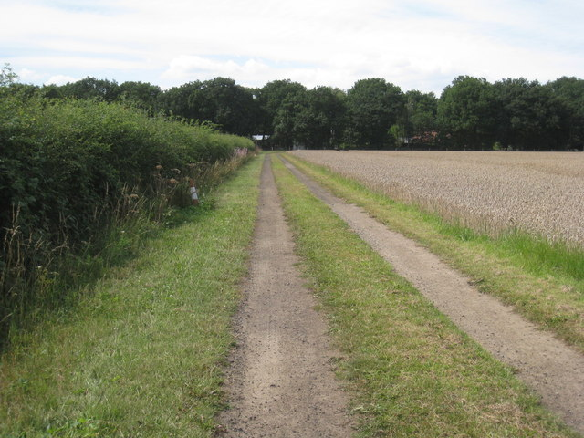 Farm track to Thorney Brown Wood
