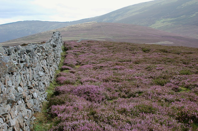 Summit wall, Faulds Craigs