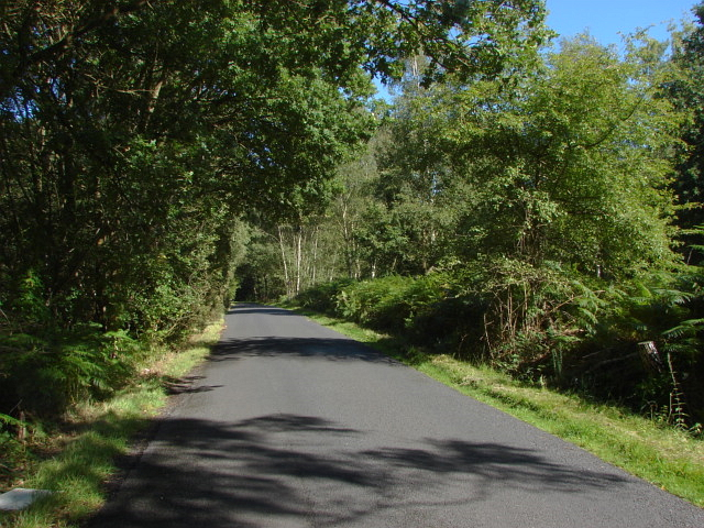 Goose Rye Road