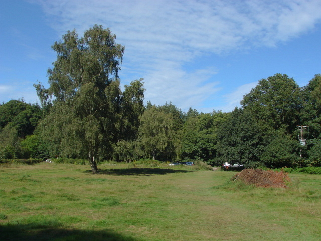 Whitmoor Common
