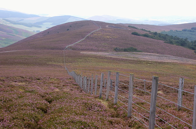 Faulds Craigs from Scawd Law