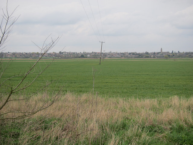 Electricity lines across North Fen