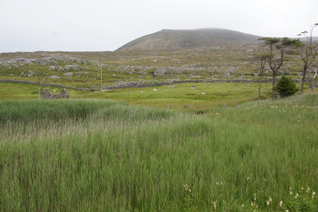 Small lochan at Quiller, Losgaintir