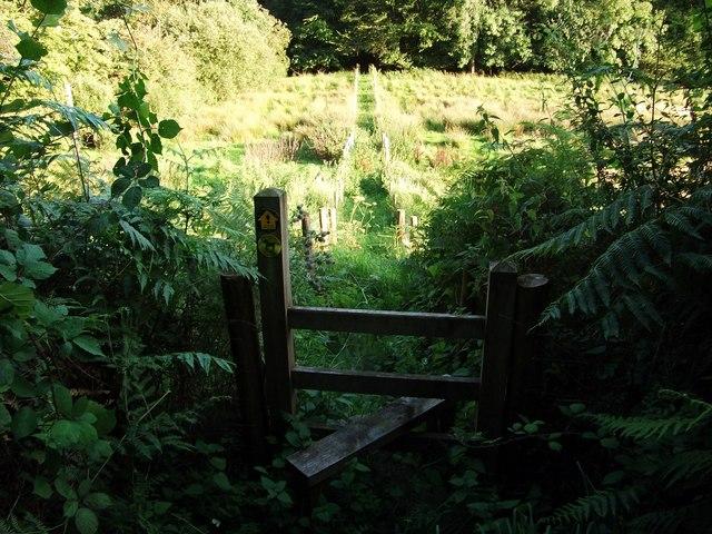 Footpath to Sarnau Farm