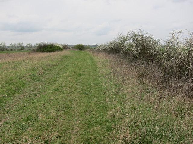North Fen Drove byway