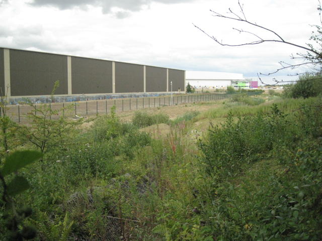 South boundary of Birch Coppice Business Park