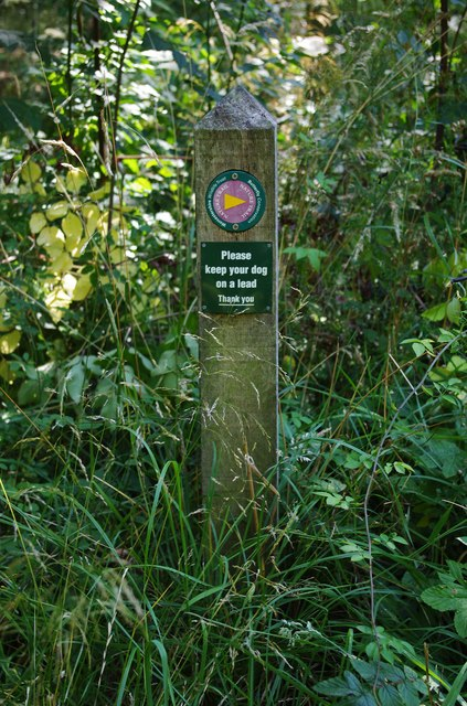 Nature Trail waymarker, Trench Wood near Sale Green