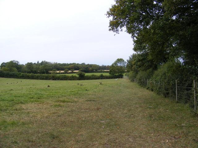 Footpath to Manse Lane