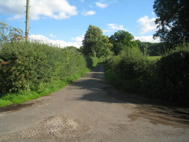 Lane to Steventon church